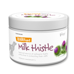 Milk thistle - Ostropest -...